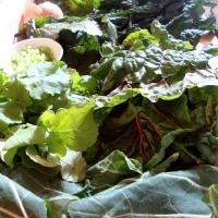 Gumbo Z'herbs and Skillet Cornbread (Gluten-Free)