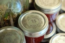 plum jam and chutney