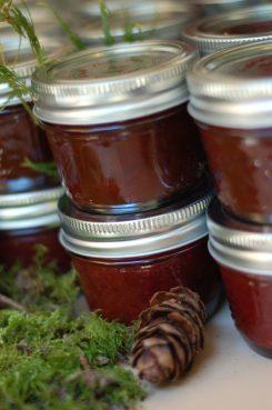 Wild Gabriola Plum Chutney https://bigsislittledish.wordpress.com/2011/10/18/wild-gabriola-plum-chutney-and-gabriola-orchard-plum-marmalade/