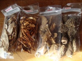 Potato, Leek and Mushroom Gratin https://bigsislittledish.wordpress.com/2011/11/16/potato-leek-and-mushroom-gratin/
