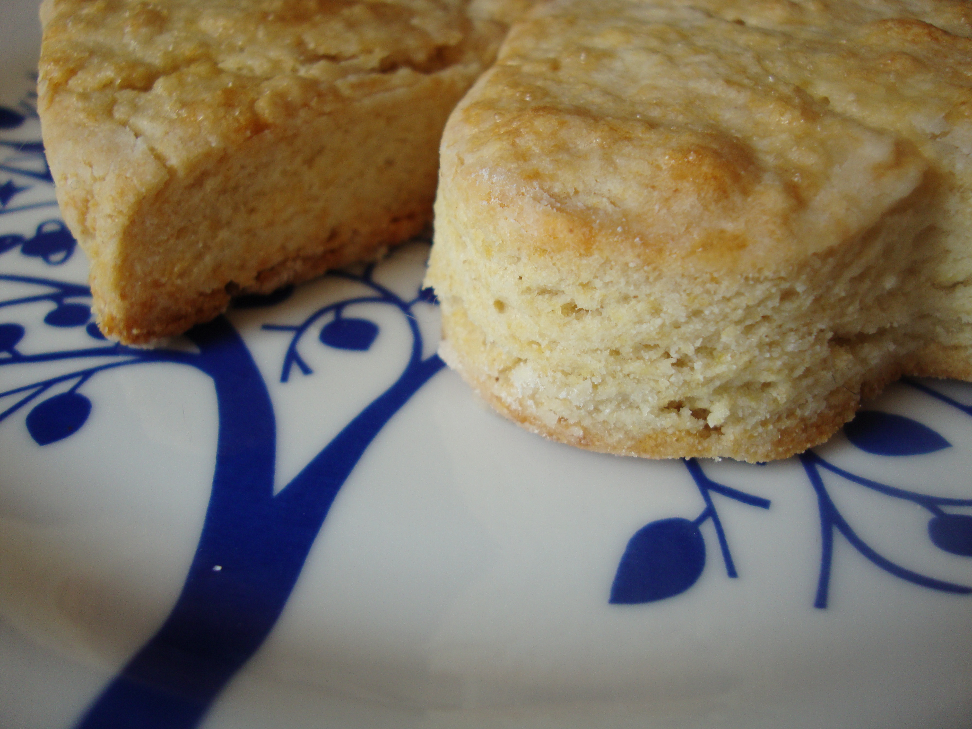 Lard Have Mercy! Gluten-Free, Pro-Glutton Buttermilk Biscuits! | Big ...
