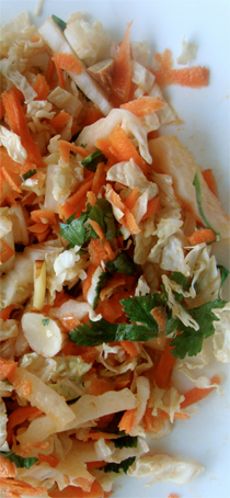 Asian Cole Slaw https://bigsislittledish.wordpress.com/2010/11/27/asian-coleslaw/