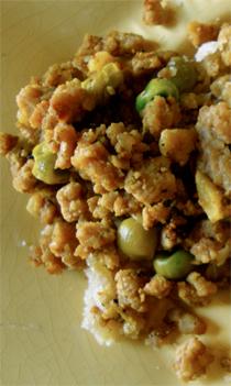 chicken keema https://bigsislittledish.wordpress.com/2011/01/03/turkey-or-chicken-keema-baked-samosas/