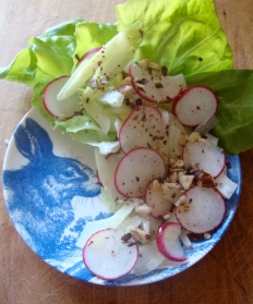 A Cooling Salad of Radish, Fennel, Celery and Hazelnuts https://bigsislittledish.wordpress.com/2012/08/05/a-cooling-salad-with-radish-fennel-celery-and-hazelnuts/