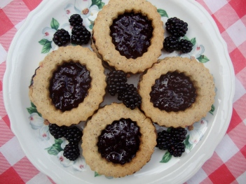 Dark Hazelnut Linzertorte With Blackberry Filling (Gluten-Free) https://bigsislittledish.wordpress.com/2012/09/02/dark-hazelnut-linzertorte-with-blackberry-filling-gluten-free/