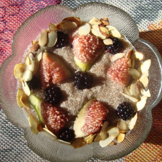 Chia Seed Pudding with Figs and Blackberries https://bigsislittledish.wordpress.com/2012/09/08/chia-seed-pudding-with-figs-and-blackberries/