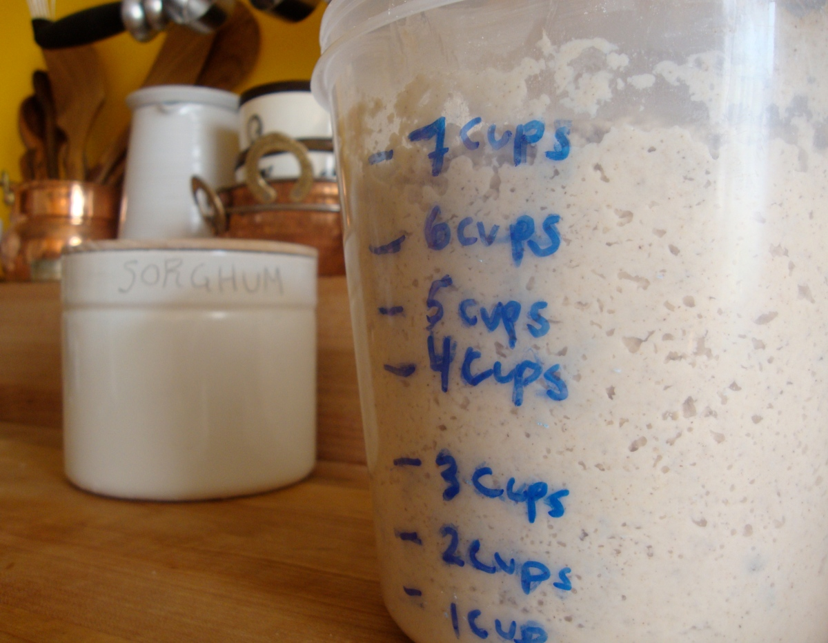 The Saga of my Gluten-Free Sourdough Starter