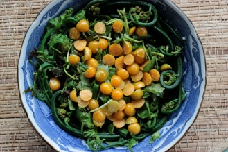 Maui Forager's Salad- Pohole Fern, Watercress and Poha Berry https://bigsislittledish.wordpress.com/2013/04/03/maui-foragers-salad-pohole-fern-watercress-and-poha-berry-salad/