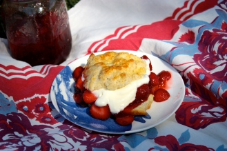 Strawberry Shortcake for Haters https://bigsislittledish.wordpress.com/2014/06/28/strawberry-shortcake-for-haters-farmshare-cooking/