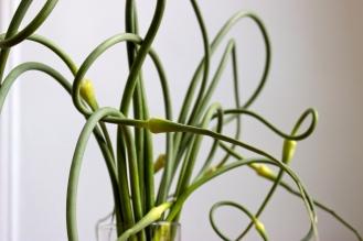 Two White Bean Dips (Garlic scape and Gremolata) https://bigsislittledish.com/2014/07/05/two-white-bean-dips-gremolata-garlic-scape-farmshare-cooking/