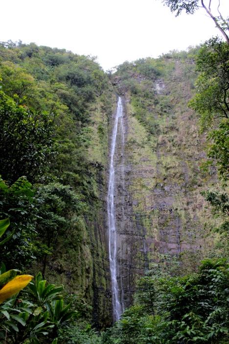 Waimoku Falls, Maui