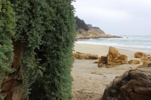 Playa Cau Cau, Chile