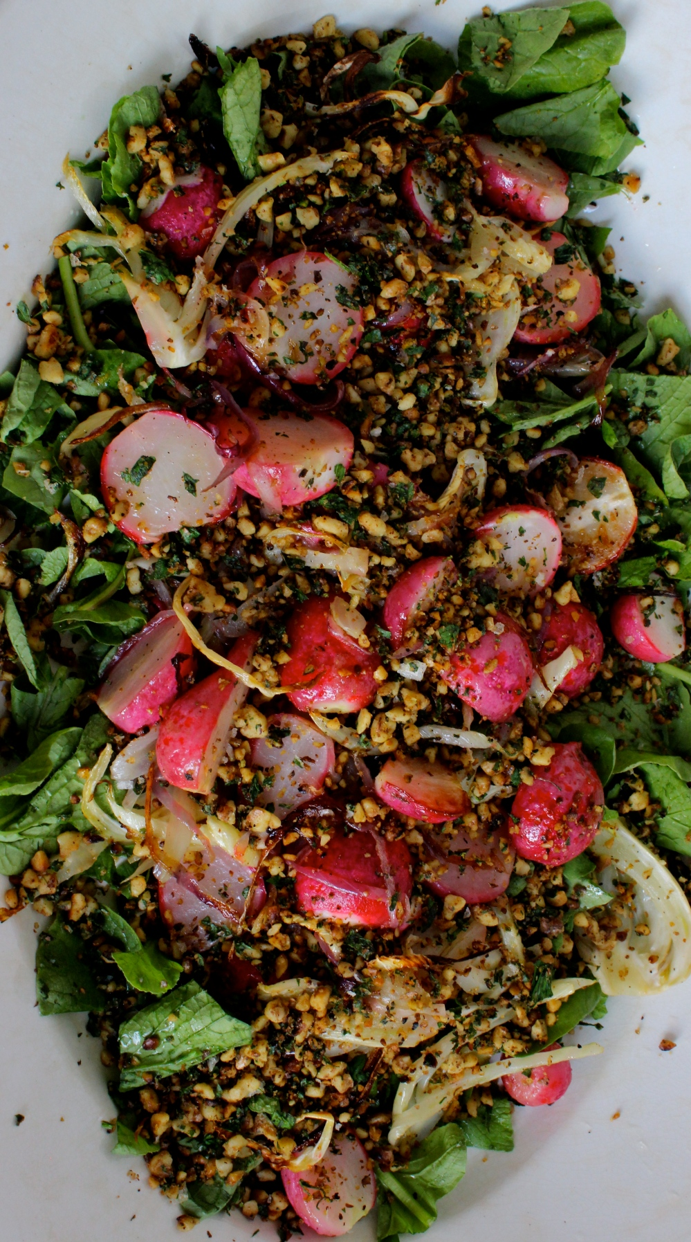 Roasted Radish and Fennel Salad with Walnut Gremolata (Cotton-Tail Salad)