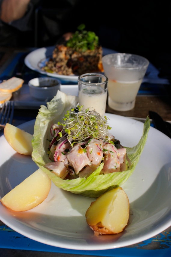 Ceviche at Fauna, Valparaiso (Photo by Erin Orr)