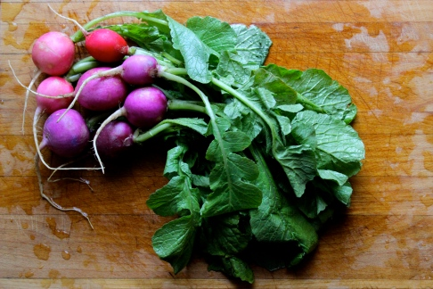 Radishes and their Greens
