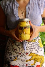 Preserved Lemons https://bigsislittledish.com/2016/11/27/beet-salads-with-preserved-lemon-simple-hearty-and-fancy-variations-oven-coven/